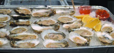 Oysters at the Stockton Market