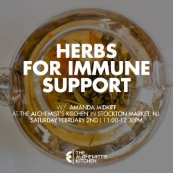 Herbs For Immune Support