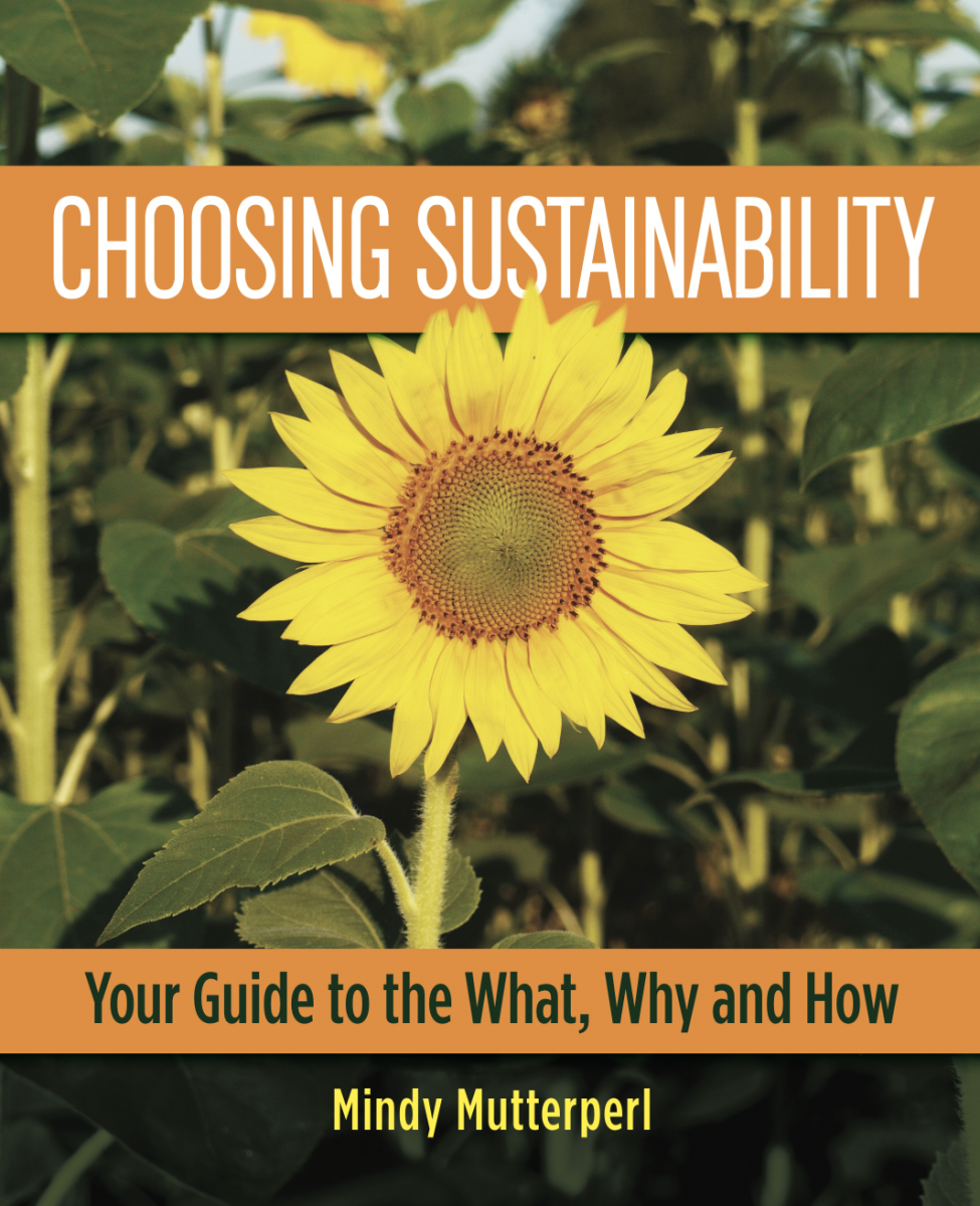 Choosing Sustainability: Your Guide to the What, Why and How